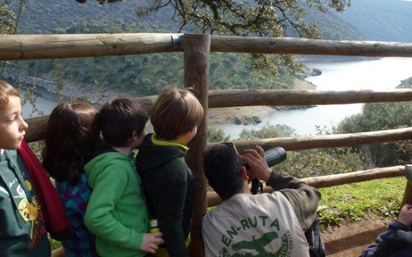 Niños avistando aves